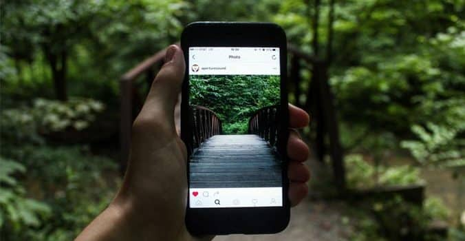 Showcasing Your Landscape Design Business On Instagram